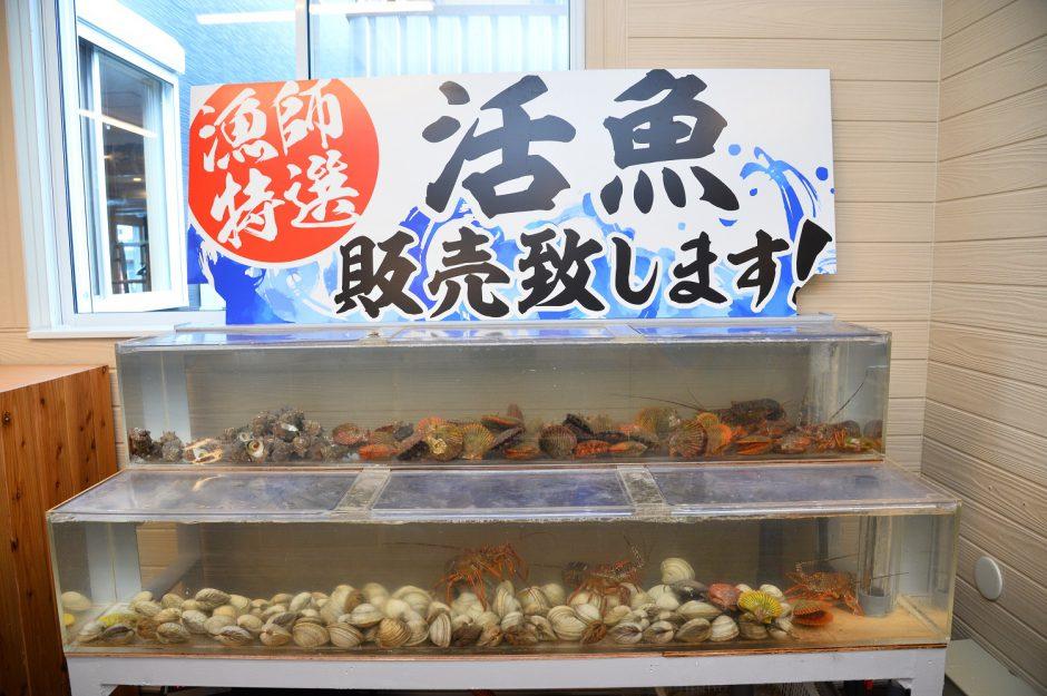小屋 青島 牡蠣