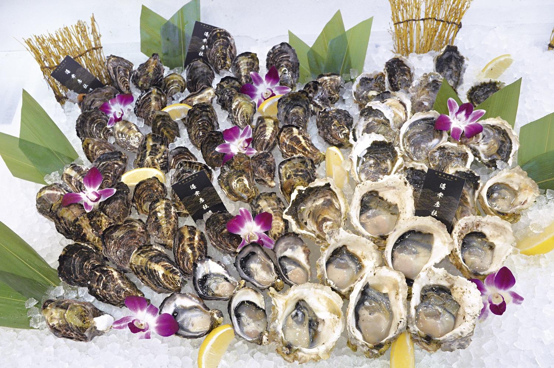 新春 牡蠣祭り開催!!青島フィッシャーマンズだけの楽しみ【海幸彦牡蠣】を味わおう!!